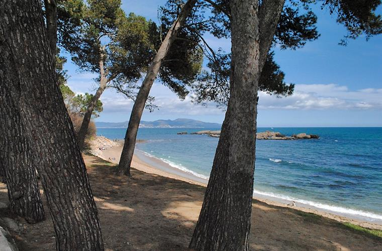 Empúries beach (Costa Brava), 35 km. from the house