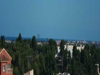 Panoramic view from roof terrace