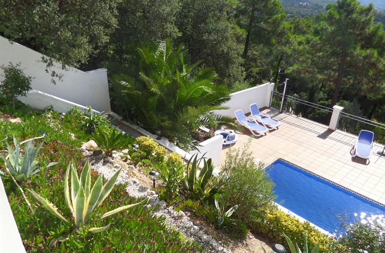 Garden with swimming pool and big terras
