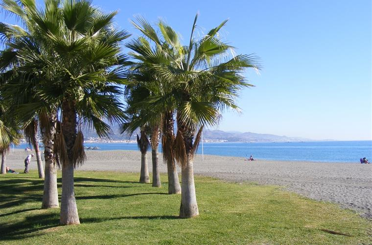 beach of Torre del Mar