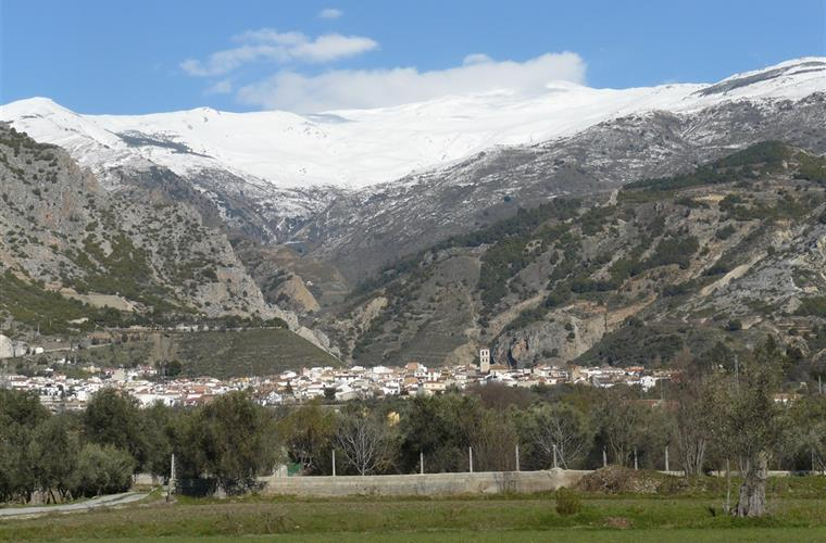 Niguelas and Sierra Nevada