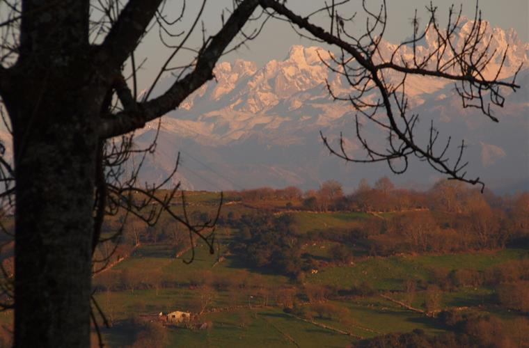 photo peaks of Europe from the garden