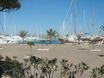 Small section of nearby marina