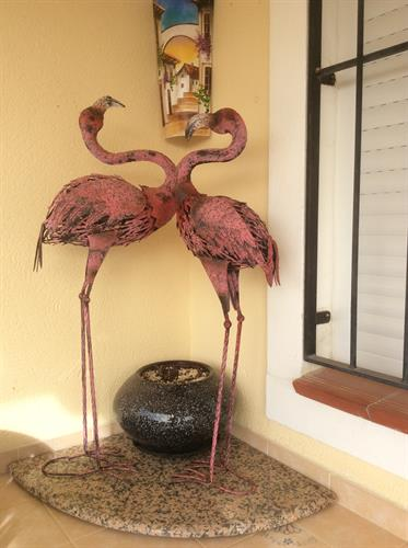 Flamingos on bar outside