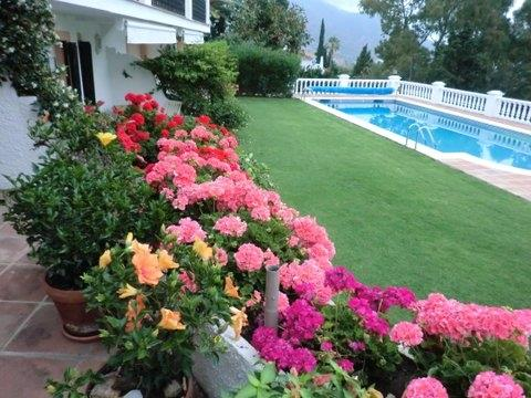 Our terrace and pool