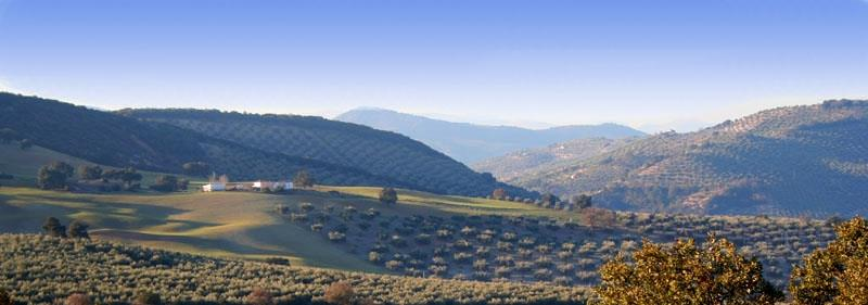 View of the valley from Cortijo Sophia