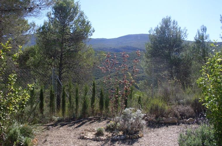 View of sierra de ave from the pool garden.