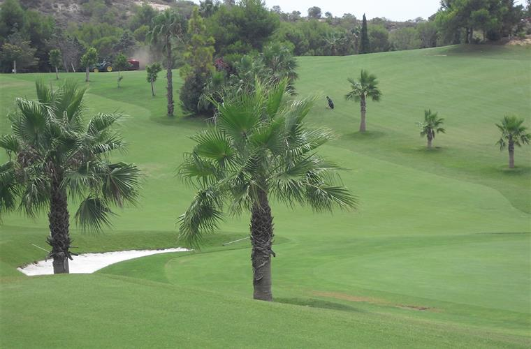 Golf course Campoamor