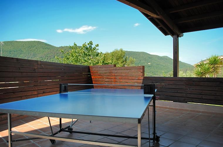 Table tenis