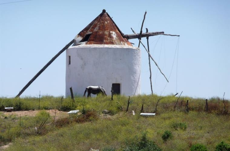 Typical old windmill in Vejer