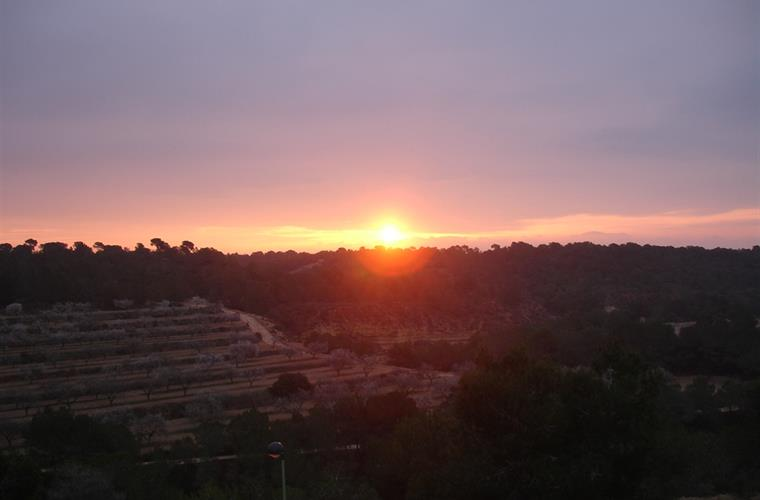 Sunrise from the roof terrace