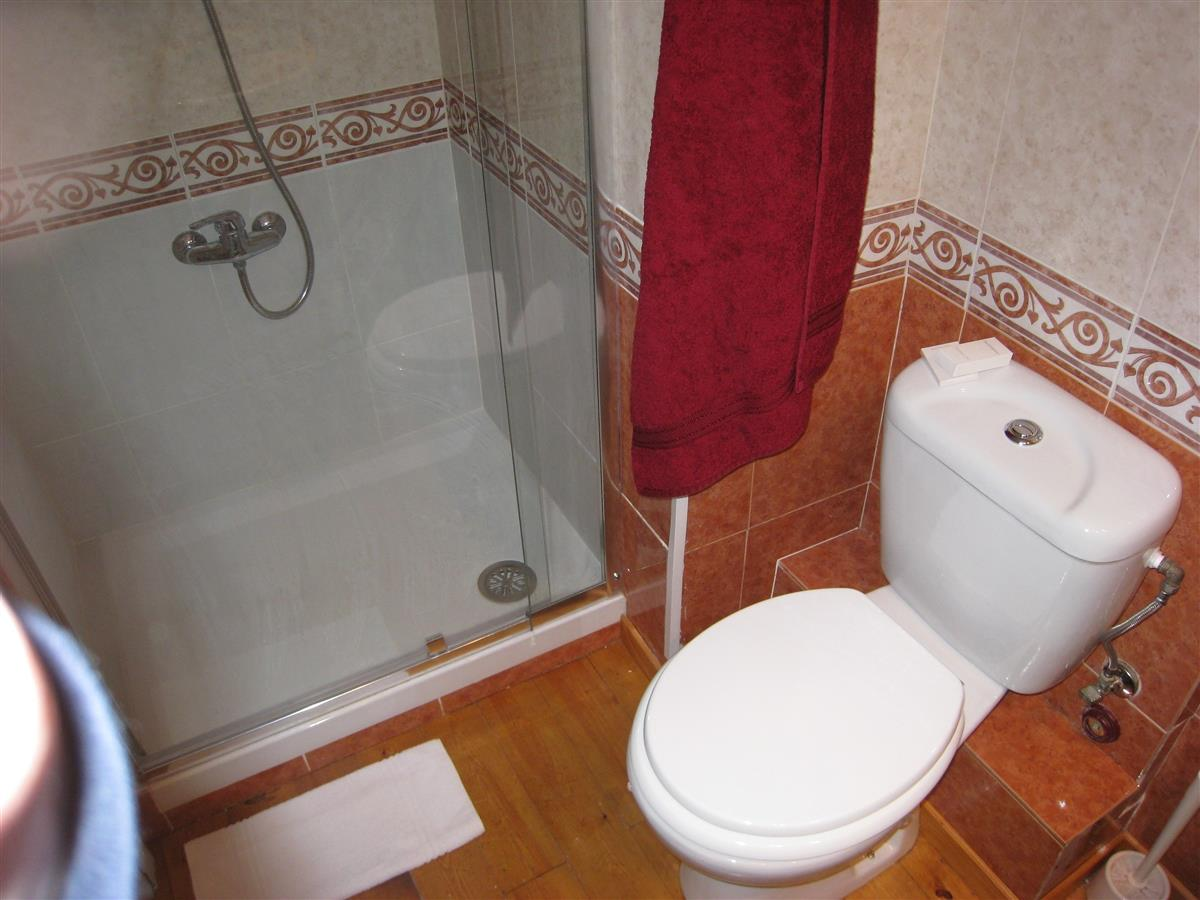 Bathroom: Shower cabin & toilet