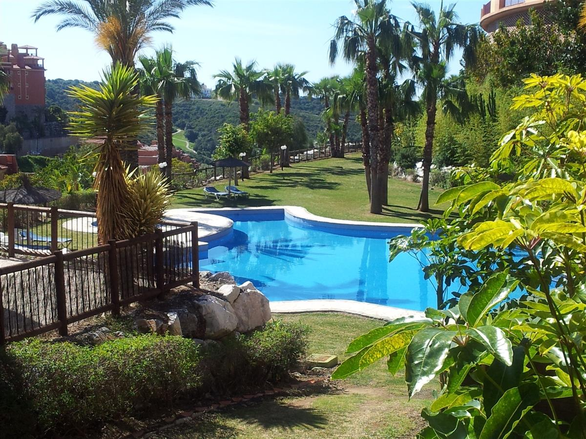 Our complex has various pools set in gardens