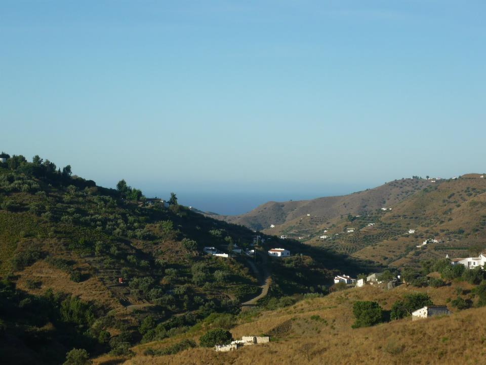 View from the Finca down to the Med.