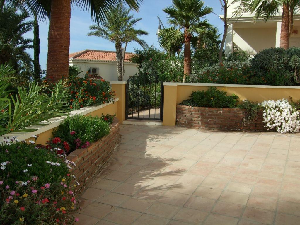 Patio garden is south facing and is shaded by palm trees