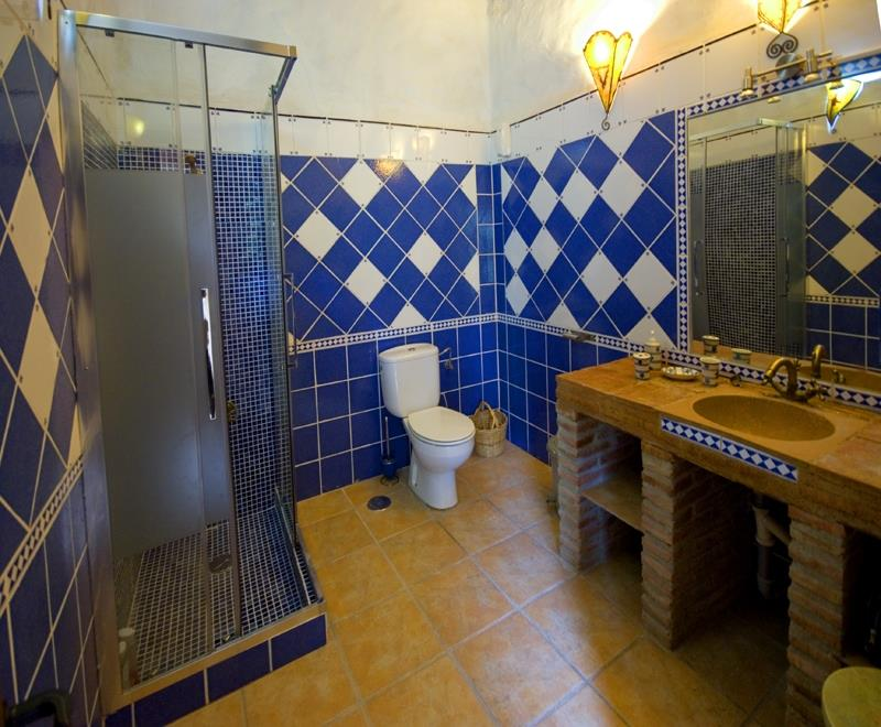 The bathroom of the main bedroom