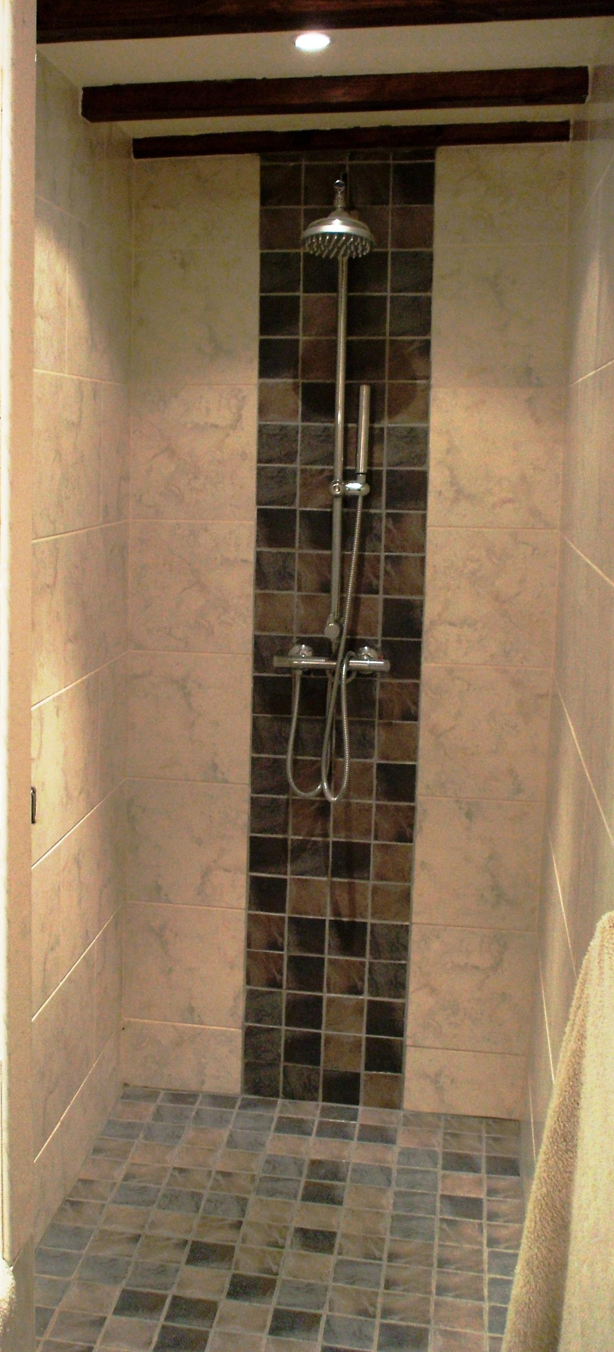 1st Bedroom Walk in Shower