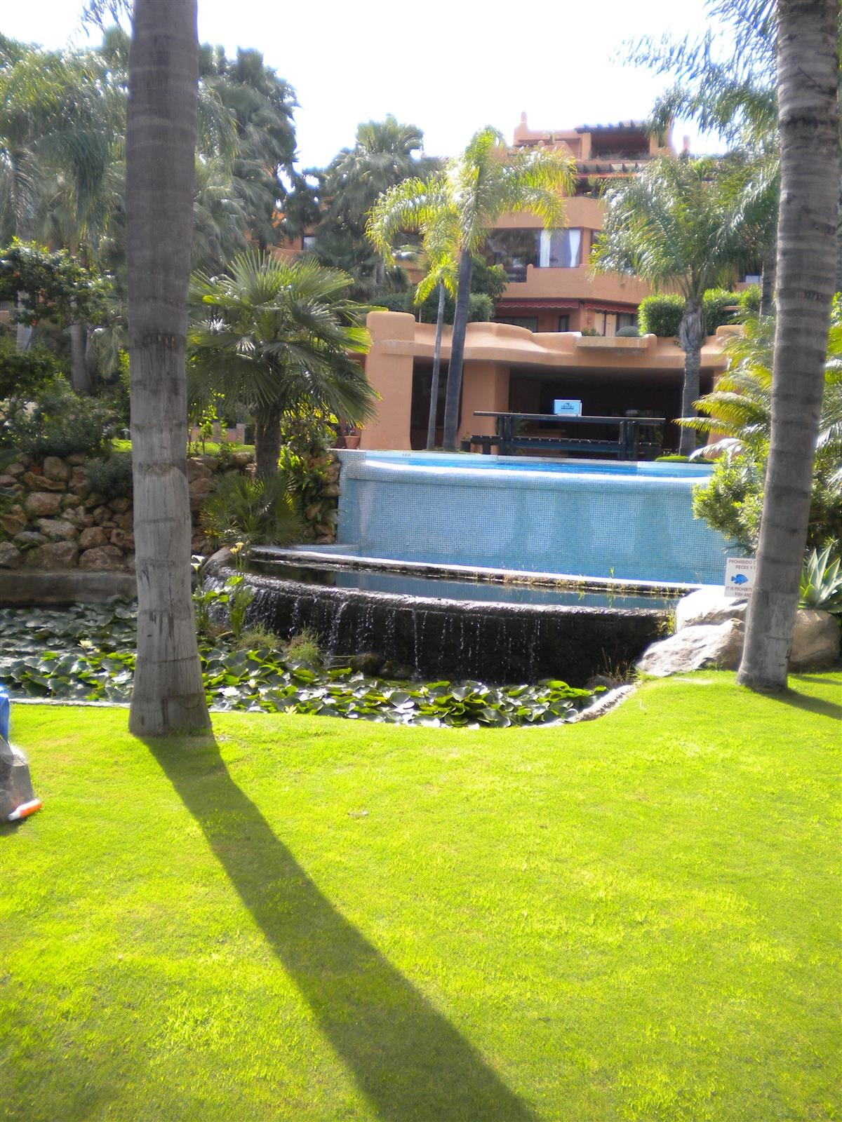 Tropical gardens lead to swimming pool