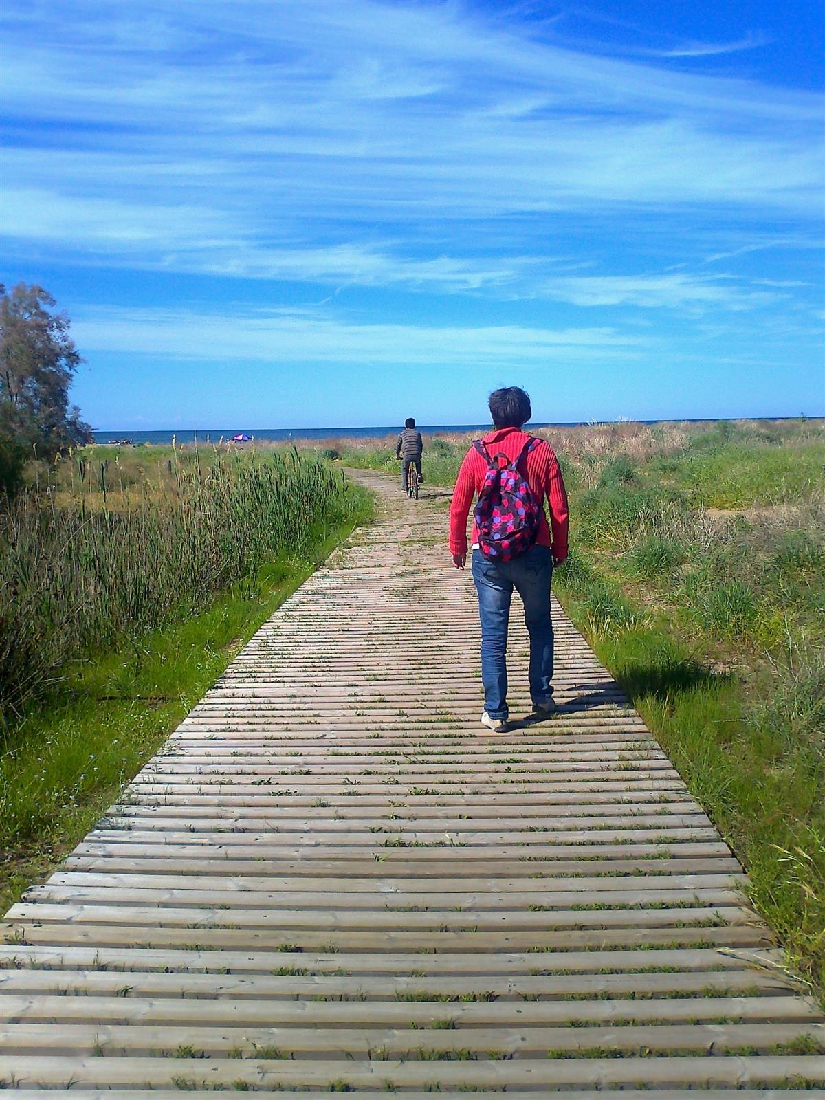 Wooden beach boardwalk: friendly to dunes, walkers & cyclists too