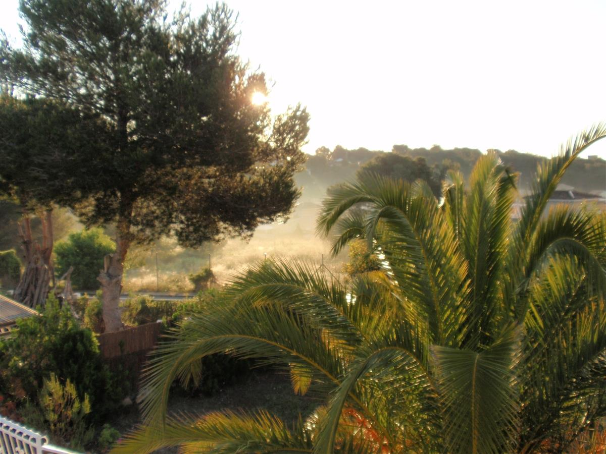 Early morning view from the upstairs terrace