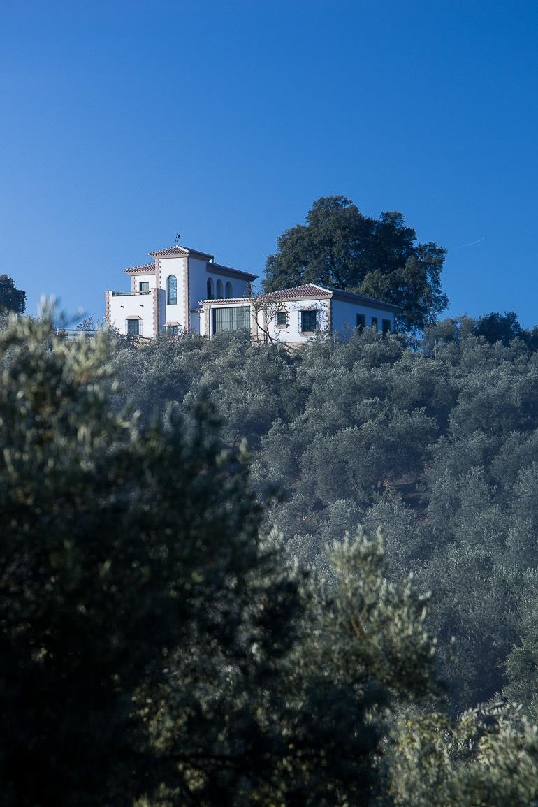 Set amidst the wild oaks and olive groves