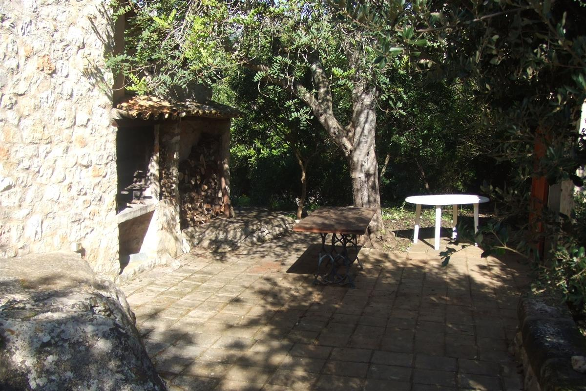 The BBQ area and wood store
