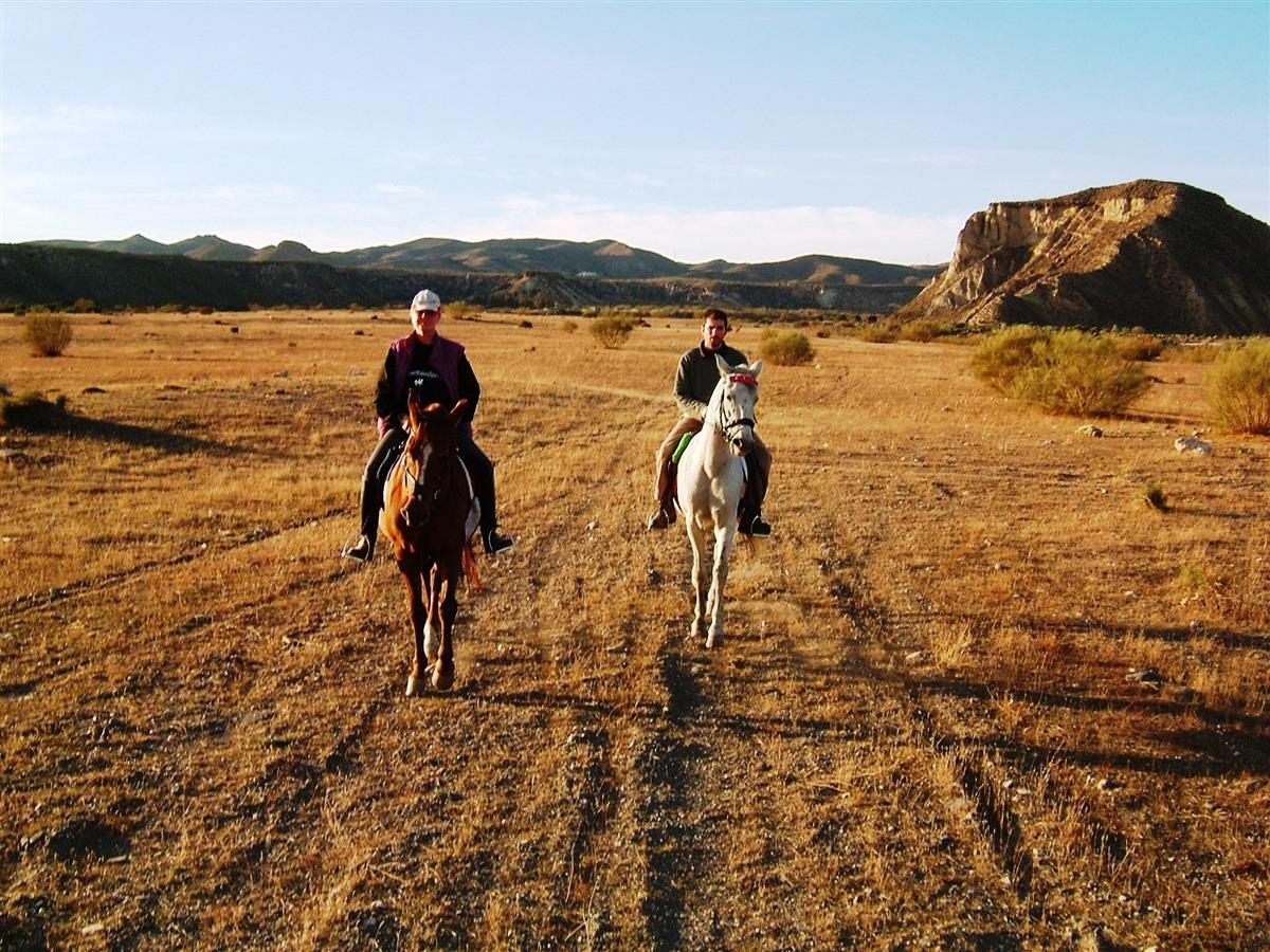 The equestrian centre is located in peaceful Spanish countryside