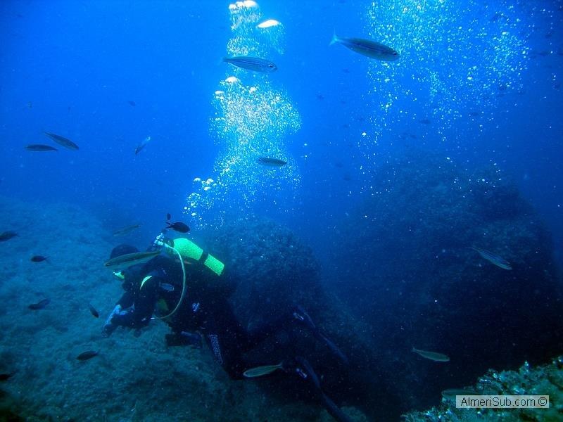 The area has some of the best coastline for diving in Spain