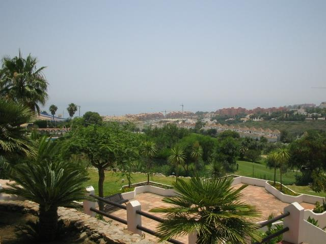View from the communal gardens