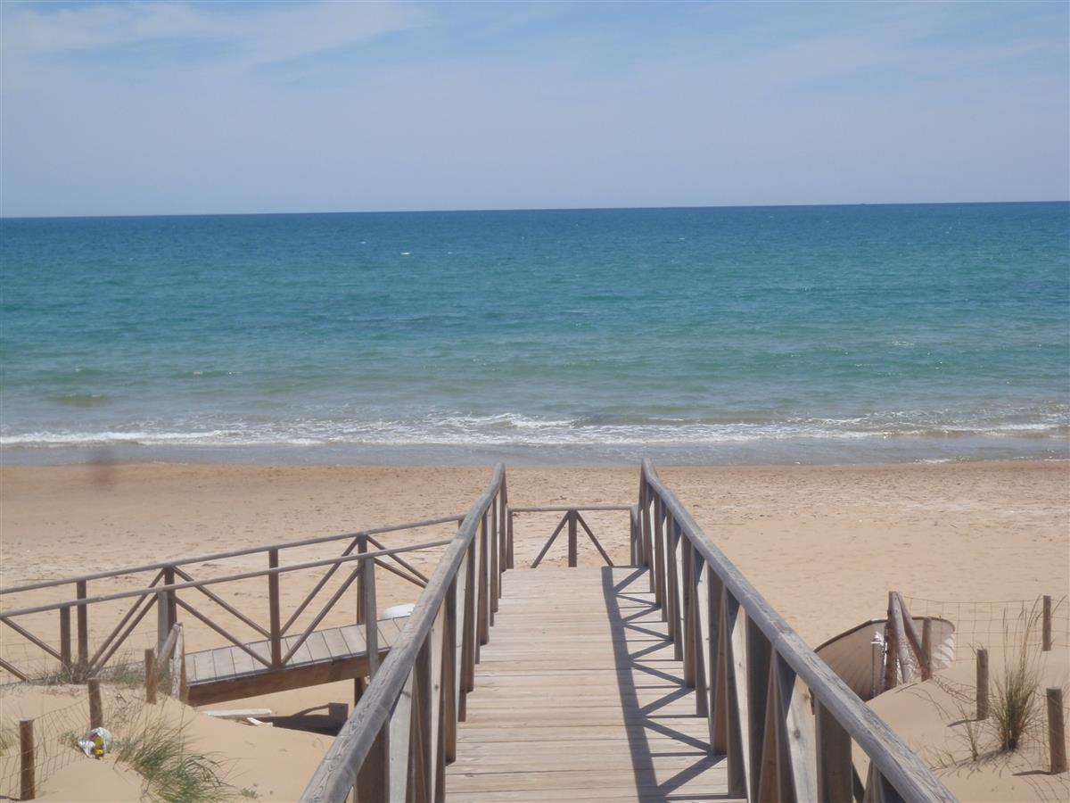 fantastic Guardamar Beach (1)