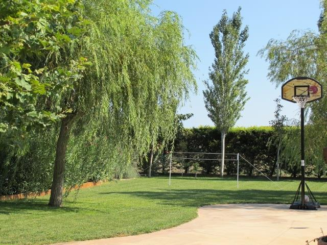 Garden and basketball