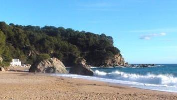 Nice beach near La Luna, with many facilities