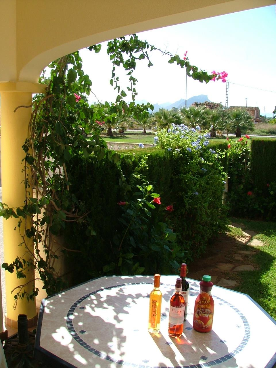 View of garden and some refreshments!