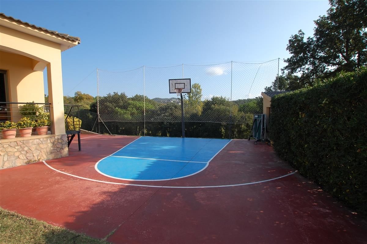 Private basketball court
