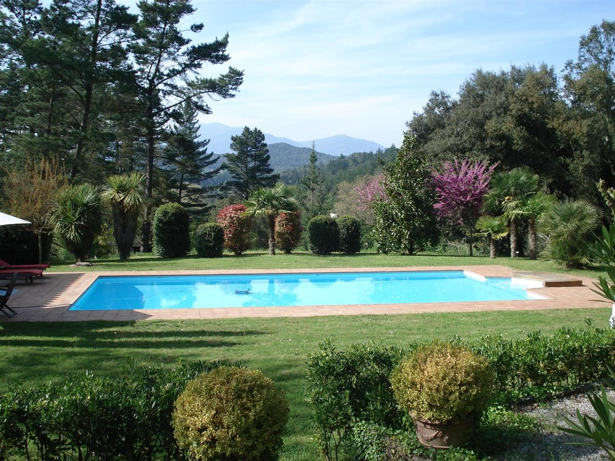"""Villa Les Félins"" swimming-pool: 12x6m, and large pool-house."