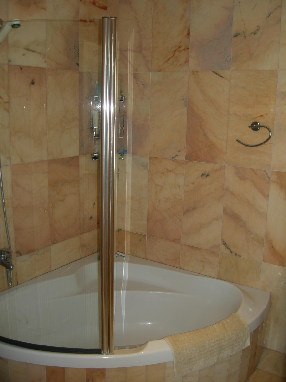 shower in one of the bathrooms