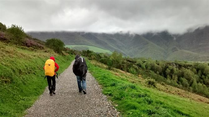 Hikers walk the Camino de Santiago