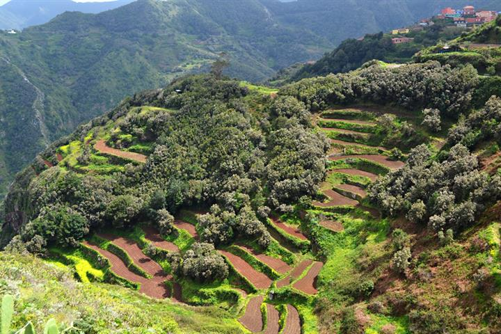 Amazing Anaga, the new UNESCO Biosphere Reserve on Tenerife