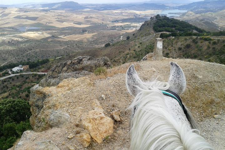 Horse trekking through the mountains of Malaga