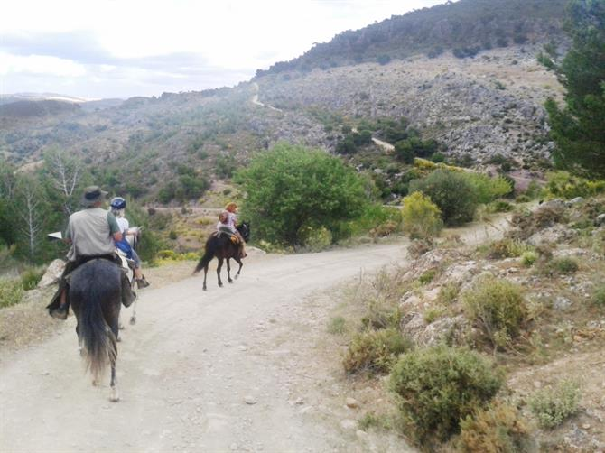 Riding through the Mountains, Malaga