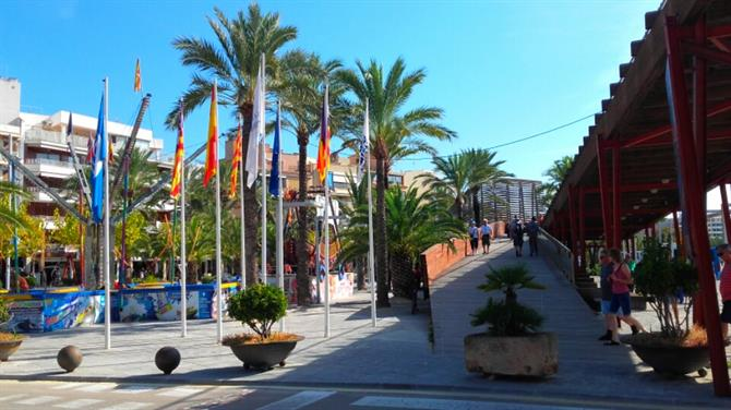 Port of Alcudia
