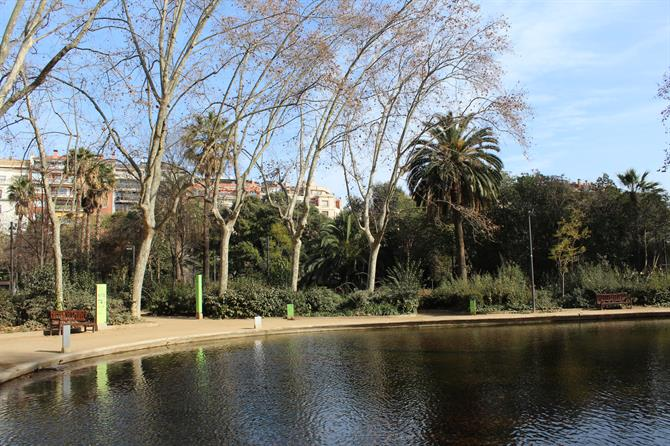 Little Lake in Parque del Turó