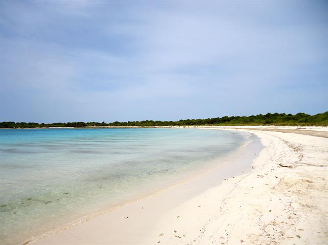 The virgin beaches of Menorca - Son Saura