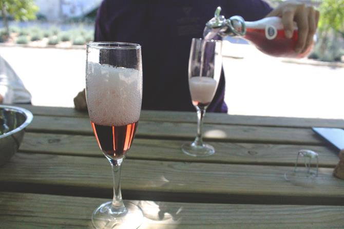 Glasses of Cava Rosa