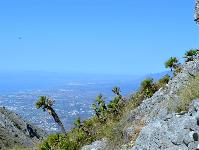 Eagles view of the Costa del Sol - La Concha Marbella