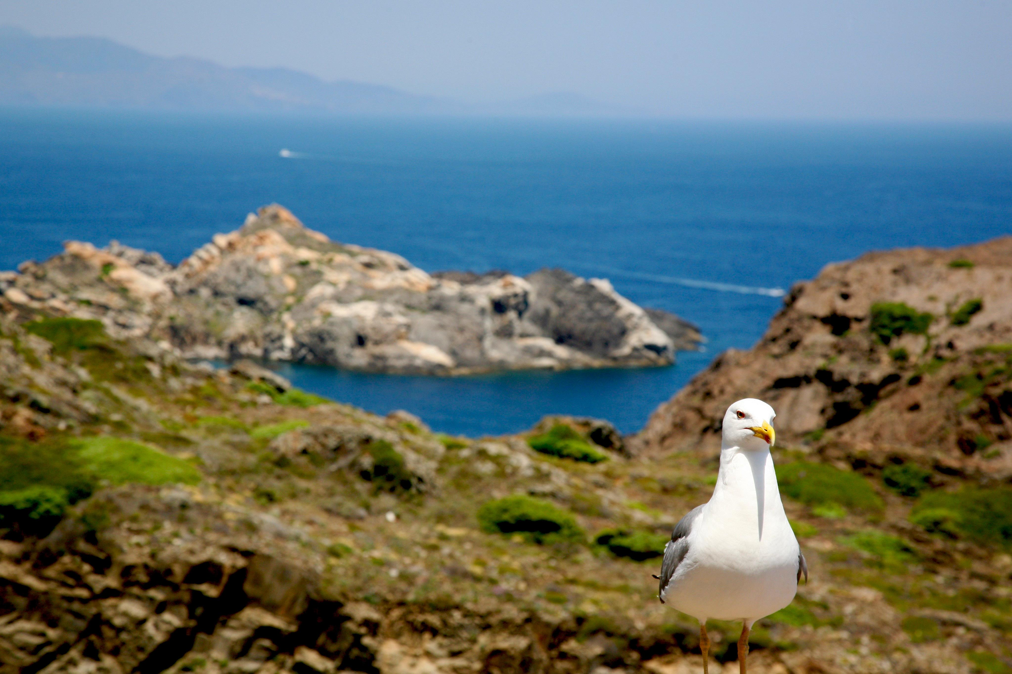 The 10 Most Fun Holiday Activities With Children On Costa Brava Good Ideas May Not Have One Circuit Below Be Fond Of You Natural Park Your Will Especially Enjoy Exploring Is Cap De Creus It Offers Visitors Fantastic Hiking Routes Which Are