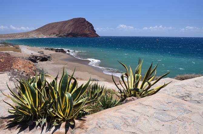 Tenerife in Winter