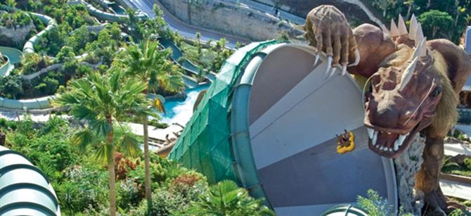 Tenerife - Siam Park - The dragon