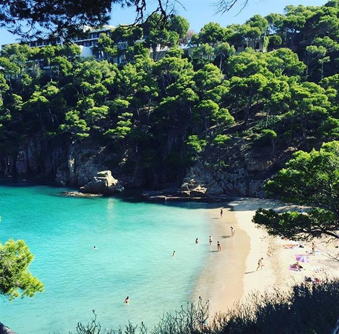 Cala Aiguablava on the Costa Brava