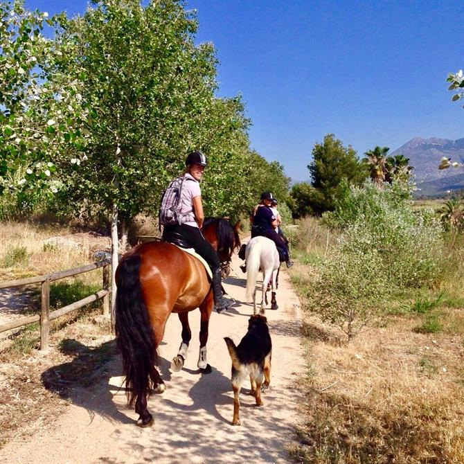Horseriding in Benidorm countryside